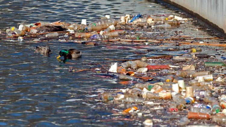 Os problemas da destinação incorreta de resíduos